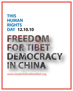 Freedom for Tibet, Democracy in China